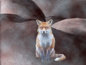 Fox on a landscape reminiscent of the body
