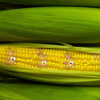 Corn with superimposed nerves
