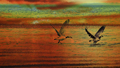 Geese superimposed over sunrise