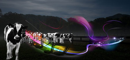 Cows in nighttime pasture with music notes