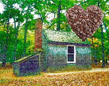 Thoreau's cabin with a heart made of coffee beans