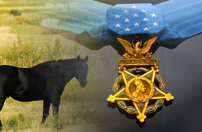 Medal of Honor and black horse