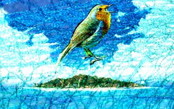 Songbird caught in daylight netting