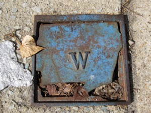 """W"" on Sidewalk Plate"