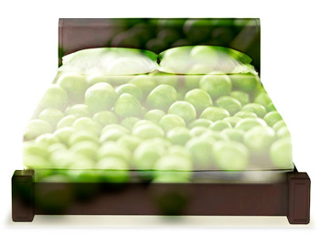 Space foam mattress with pea overlay