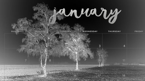 Winter trees in negative with superimposed January calendar