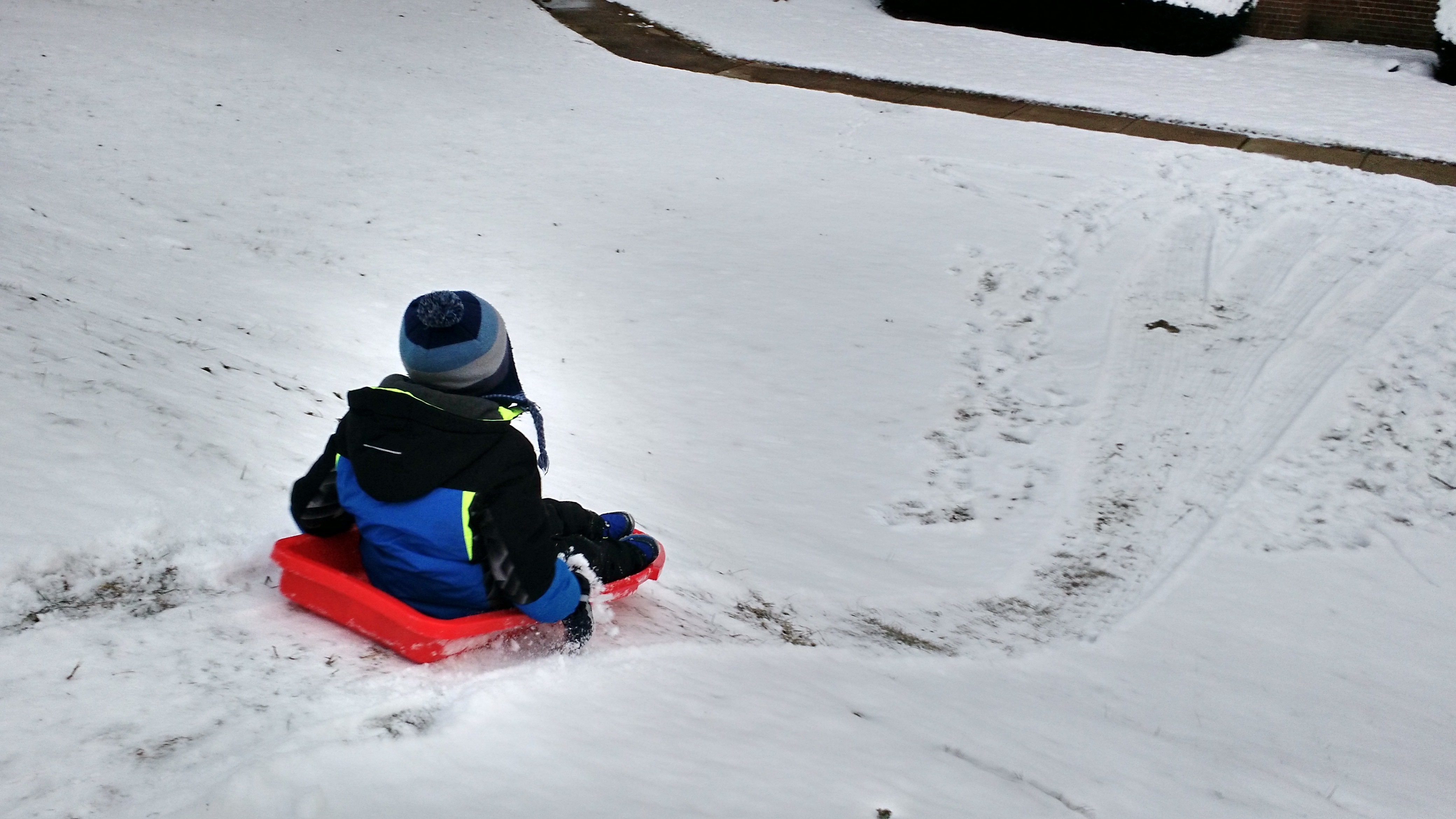 KFP sledding down snowy hill
