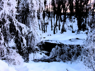 Forest in ice storm with brush stroke filter