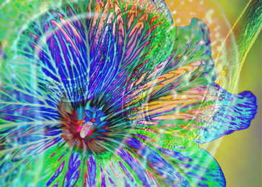 Psychedelic flower with joyous nematodes