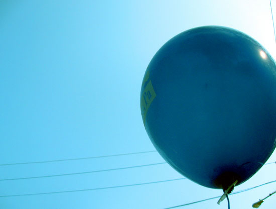 Blue balloon by Alyce Wilson