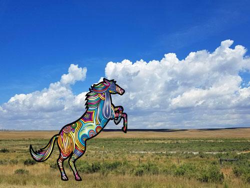 multicolored horse on plain