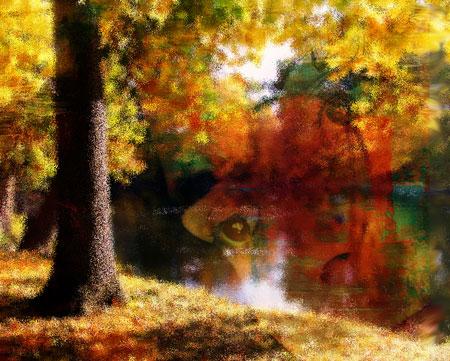 Woman superimposed over fall river scene